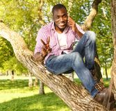 African american sitting on a tree Stock Image