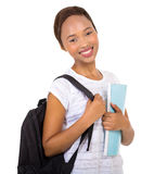 African american university student Stock Photography