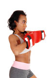 African American woman with boxing gloves. Stock Photos