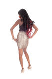 African American woman standing from back. Stock Image