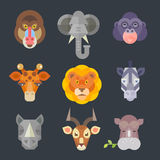 African animal icon color set Royalty Free Stock Photography