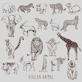 African Animal Royalty Free Stock Images