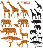 African Animal Silhouettes Royalty Free Stock Images