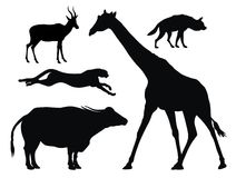 African animals. Abstract vector illustration of african animals Stock Images
