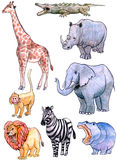 African animals. Hand drawn with color pencils, african animals set Stock Photos