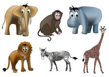 African animals Stock Photos