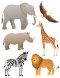 African animals Royalty Free Stock Photos