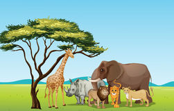African animals. Illustration of African animals in savannah Stock Photography