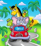 African animals in car on road. Color illustration Stock Photos