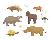 African animals cartoon vector set.  Stock Images