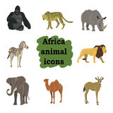 African animals cartoon vector set. Elephant, giraffe, rhinoceros, gorilla, lion camel zebra llama Royalty Free Stock Photography