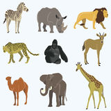 African animals cartoon vector set. Elephant, giraffe, rhinoceros, gorilla, lion camel zebra llama stock illustration