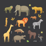 African animals cartoon vector set. elephant, rhino, giraffe, cheetah, zebra, hyena, lion, hippo, crocodile, gorila and Stock Image