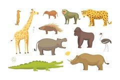 African animals cartoon vector set. safari isolated illustration. Royalty Free Stock Photo