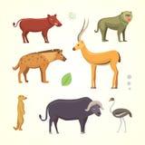 African animals cartoon vector set. safari isolated illustration. Stock Photography