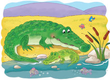 African animals. Cute crocodiles. Illustration for children. Royalty Free Stock Photos