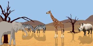 African animals in desert. Illustration of african animals (Giraffe, rhino, elephant en zebra) in a desert scene royalty free illustration