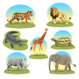 African animals iwith graphic backgrounds. Royalty Free Stock Image