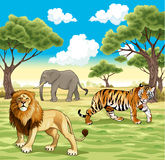 African animals in the nature. Vector illustration Royalty Free Stock Image