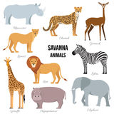 African animals of savanna elephant, rhino, giraffe, cheetah, zebra, lion, hippo . Vector illustration. African animals of savanna elephant, rhino, giraffe royalty free illustration