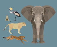 African animals set - Flat design Royalty Free Stock Images