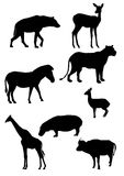 African animals silhouette. Eight silhouettes of various wild african animals Stock Photo