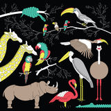 African animals sim 4 Royalty Free Stock Images