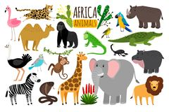 African animals. Various wildlife animals of Africa, vector monkey or marmoset and leopard, parrot and rhinoceros. Cobra and ostrich characters isolated on Royalty Free Stock Image
