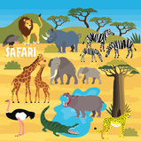 African Animals. Vector Illustration. Royalty Free Stock Photography