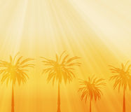 African background Stock Photo