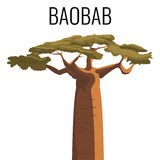 African baobab tree icon emblem with text isolated on white Stock Image