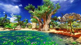 African baobabs Royalty Free Stock Photos