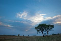 African big sky at Ezemvelo Royalty Free Stock Photography