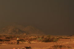 African boy in namibia on bicycle royalty free stock photos