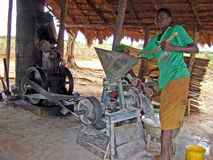 African boy working stock image