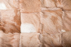 African Buck Texture. Square patches of buck hide stock photography