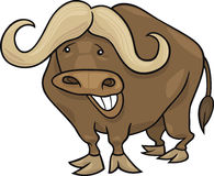 African buffalo. Cartoon illustration of funny african buffalo vector illustration
