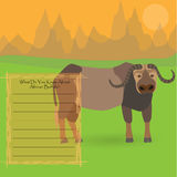 African Buffalo. Against Symplistic Nature Background and Poster with Space for Interesting Facts about this Animal. Educational Card for Childrens Schooling Royalty Free Stock Images