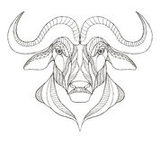 African buffalo head zentangle stylized, vector, illustration, f Royalty Free Stock Photos