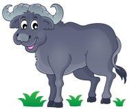 African bull image 1. Eps10 vector illustration stock illustration