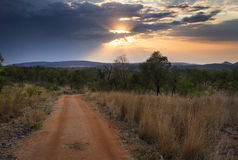 African Bush Sunrise Trail Royalty Free Stock Photo