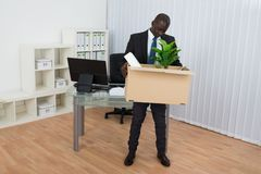 African Businessman Holding Folder And Plant In Cardboard Box Royalty Free Stock Photos