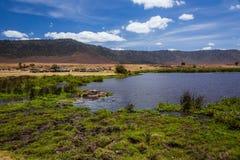 African car safari in the Ngorongoro area. Tanzania. stop near the lake stock photos
