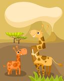 African card Royalty Free Stock Images