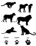 African cats illustrated silhouettes. African cats ( cheetah, leopard and lion) illustrated silhouettes with paw prints Royalty Free Stock Photography