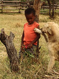African child and dog royalty free stock photography