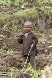 African child working in the field Royalty Free Stock Photos