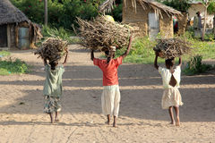 African children. Some children in a typical village of Kenya carrying bundles on their heads for fire wood for cooking royalty free stock image