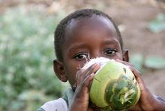 African children. Portrait of an African child in Kenya who drinks the juice of a coconut stock photos