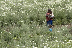 African children in a daisies field Stock Images